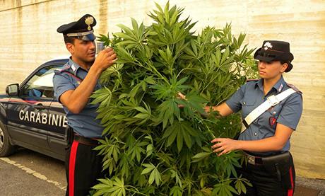 depenalizzazione marijuana