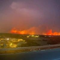 """Sardegna in fiamme, boschi distrutti e animali morti. Coldiretti: """"60% incendi causati volontariamente"""""""